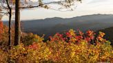 Biz: NC's fall colors equal tourism boom for Asheville; Fenton in Cary lands another key retailer - Triangle Business Journal