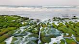 春季限定美景-老梅綠石槽 北觀處結合社區巡守並積極落實「向海致敬」!   蕃新聞