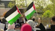 Rally In Support Of Palestine In Bridgeview
