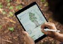爆料達人曝光iPad 9處理器升級 價格、外觀都不變