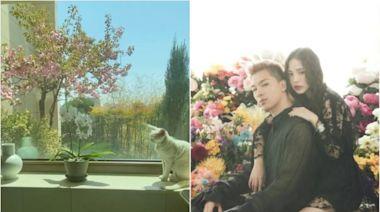 跟宋慧喬、Rain當鄰居!BIGBANG太陽3億豪宅曝光 落地窗眺望首爾夜景 | 星鮮事 | Babyou姊妹淘