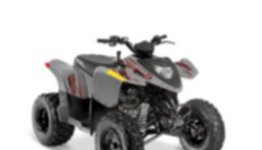 13,000 ATVs recalled for a problem that's happened several times and caused a crash