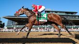 'She's a superstar.' Letruska tunes up for Breeders' Cup with wire-to-wire romp.