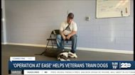 New York nonprofit helps veterans with PTSD by introducing them to service dogs