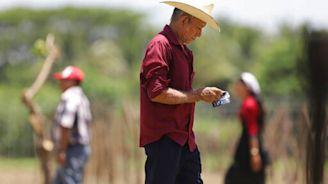 Mexico tree plan in El Salvador aims to stem migration