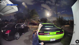 Dodge Challenger Used As Cover In Florida Puppy Shootout