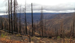 Evacuation warning issued for Creek Fire burn scar area in Fresno County