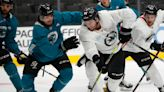 Five Sharks to follow at the 'Rookie Faceoff' in Arizona this weekend