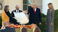 Watch: Trump hosts 2020 White House turkey pardon, introduces 'Corn' and 'Cob'