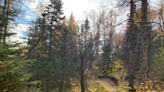 Shoring up Alaska's trail infrastructure - Alaska Public Media