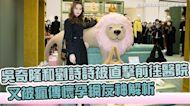 吳奇隆和劉詩詩被直擊前往醫院 又被瘋傳懷孕網友神解析