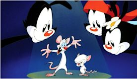 10 Best Animaniacs Characters, Ranked