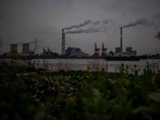 酸台商「柿子挑軟的吃」 謝金河:對台灣、中國停電反應大不同 - 自由財經