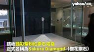 近16克拉「櫻花」粉紅鑽石上看10億天價 創拍賣史上最大顆紀錄