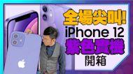 [開箱]紫色 iPhone12實機真美!iOS14.5正式版搶先體驗ft.iPhone12系列長期使用心得