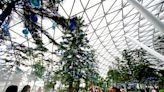 玩遍奇幻滑梯、天空之網、樹籬迷宮、天懸橋~新加坡星耀樟宜星空花園