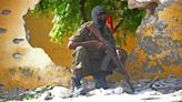 Use Honey Instead of COVID Vaccines, Al-Qaeda Backed Militants Say