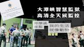 大潭峽智慧監獄高清全天候監控 羈留者:我的生活就像動物 | 獨媒報導 | 獨立媒體