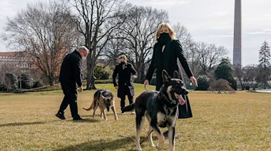 First Lady Jill Biden Has Been 'Obsessed' with Getting Dogs Champ and Major 'Settled' at the White House
