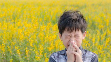 小孩過敏怎麼辦?別焦慮!小兒醫師教你如何幫孩子打造抗敏體質 | 蕃新聞