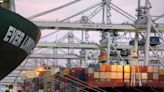Fascinated tourists are coming to Savannah see the backlog of cargo ships, tourism boss says