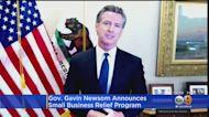 Newsom Announces Small Business Relief Program