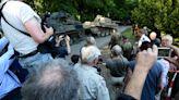德國榮民偷藏二戰坦克,檢方收押後公開拍賣