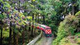 台灣鐵道旅行紅到國際!英國紀錄片來台捕捉在地之美