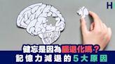 【貴人善忘】健忘是因為腦退化嗎?記憶力減退的5大原因