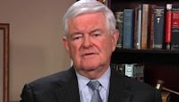Newt Gingrich: 'The entire left is living in a fantasy world'