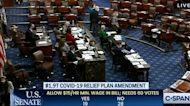 Arizona Senator Kyrsten Sinema Votes Against $15 Minimum Wage Effort