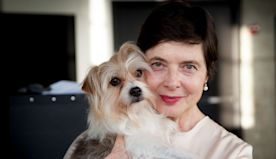 How Isabella Rossellini Is Using That Master's Degree in Animal Behavior
