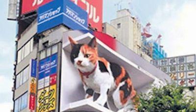 街頭吸睛 香港何時有「裸眼3D」? - 晴報 - 港聞 - 新聞