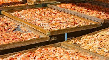 這種家常食物 補鈣保護心血管首選(組圖) - - 美食與廚藝