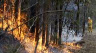 News On the Move: Australia wildfires burn over 12 million acres, Puerto Rican residents on edge after 'disastrous' quake