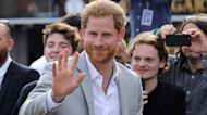 Prince Harry Compares Royal Life to Living in a 'Zoo' and 'The Truman Show'