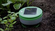This outdoor gadget is like a weed-removal robot vacuum for your garden