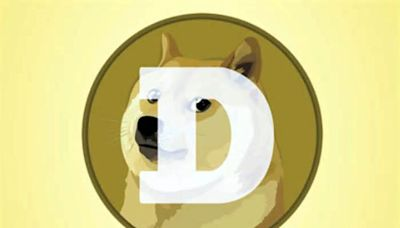 Elon Musk hyped up Dogecoin but Michigan investors still call the meme-inspired crypto a gamble
