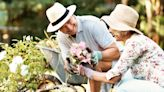 17 Tips To Live Comfortably Off Just a Social Security Check
