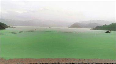 今年單日最高雨量 曾文水庫8分飽了