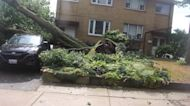 Powerful storm brings floods and fallen trees to Toronto, Canada