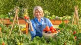 Martha Stewart branded food items now at Publix