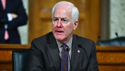 Sen John Cornyn Roasted for Complaints About Biden's Tweets, Lack of Cable News Interviews
