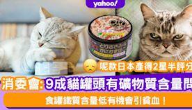 消委會|9成貓罐頭有礦物質含量問題!4成主食罐鐵質含量低有機會引...