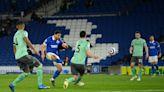 Brighton - Everton: Recap, video, analysis, 3 things learned