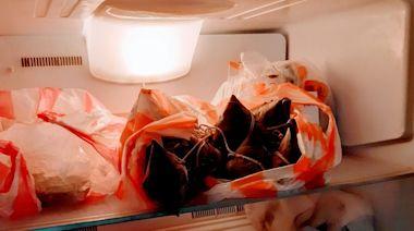 居家防疫囤積食品 達人傳授家庭式冷凍要領