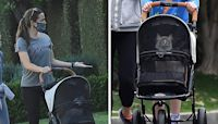Jennifer Garner Pushed Her Cat Around In A Stroller While Taking A Walk