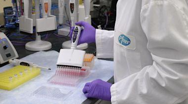 BNT疫苗接種半年後效力減弱!輝瑞:追加第三劑可防Delta變異株