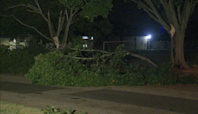 Storms snap tree limbs, cause power outages for over 40K