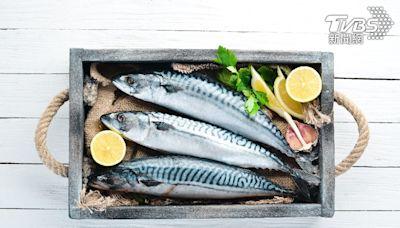 營養師推薦「十種好魚」 提升代謝、增強保護力│TVBS新聞網